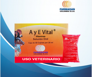 A Y E vital caja