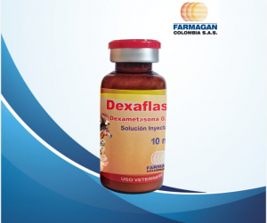Dexaflash 10 (1)