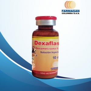 Dexaflash ® X 10 ML cja x 12 und