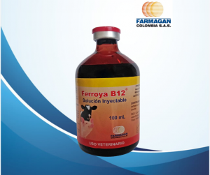 Ferroya B12