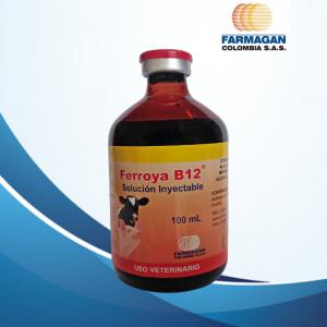 Ferroya B12 ® X 100 ML