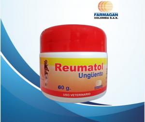 Reumatol 60