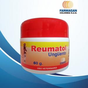 Reumatol ® X 60 g.