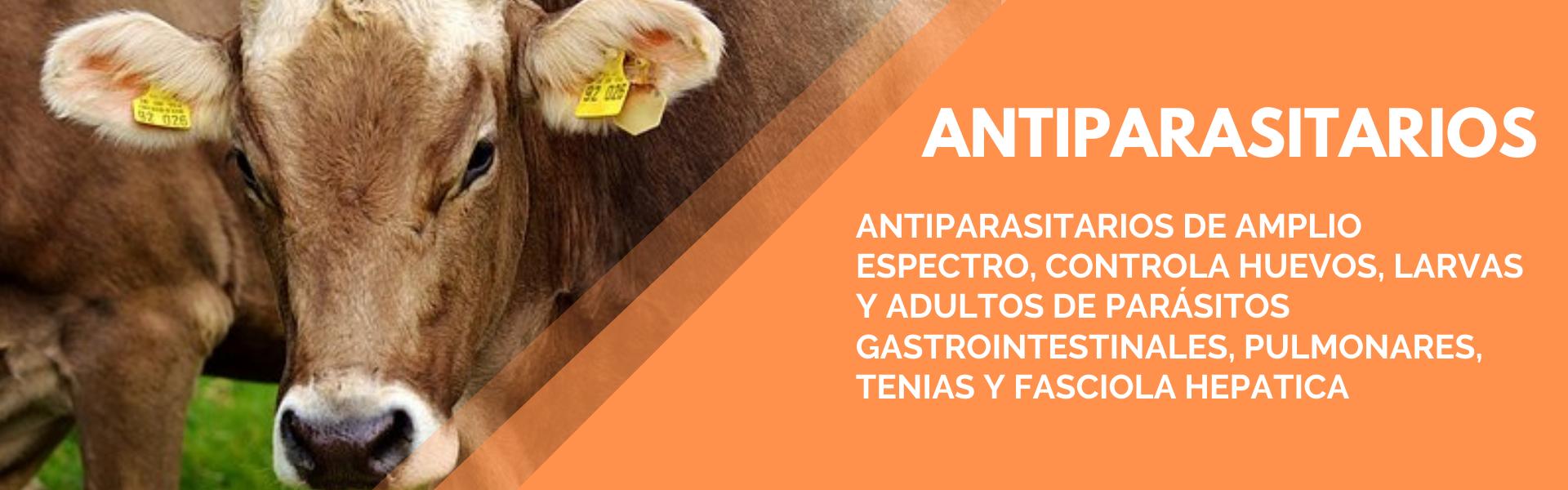 Copia de Todo lo que necesitas para tus animales (2)